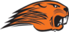 Beavercreek High School Varsity Hockey